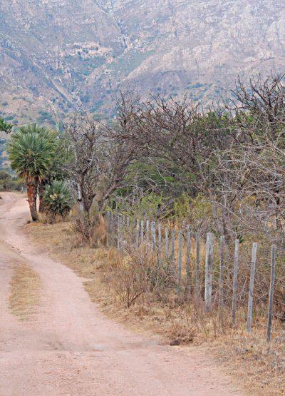 Inmobiliaria-Cip-Lote-en-Cortaderas-en-esquina-dentro-del-Barrio-La-Martita--(02)