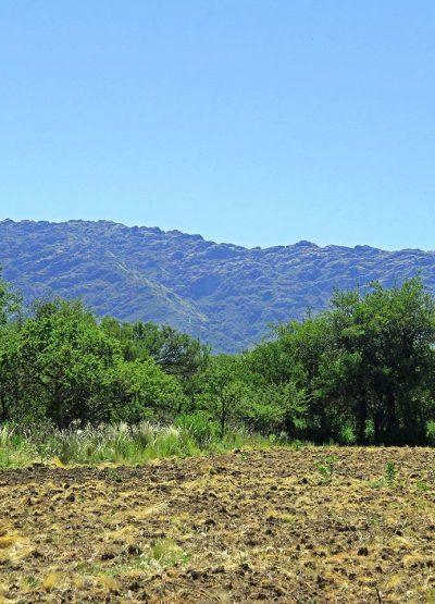 Cip-Inmobiliaria-Lotes-en-venta-en-Cortaderas-San-Luis-Tierra-soñada-06