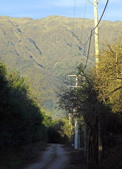 Inmobiliaria-cip-Venta-de-lotes-en-Carpinteria-La-Dominga-01