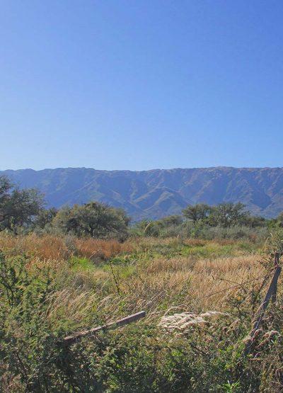 Cip-inmobiliaria-constructora-Venta-de-terreno-en-Cerro-de-Oro-Golden-Hill-04