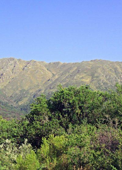 Cip-Inmobiliaria-Venta-de-lotes-en-Carpinteria-El-Mollar-de-la-Cañada-01